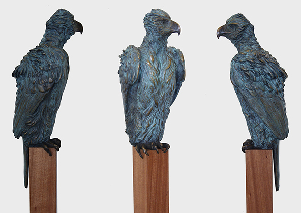 Philipian eagle, bronze, 70cm h, commission in edition of 8