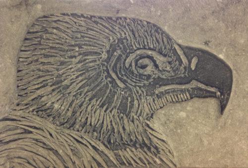 Vale Gier, tekening in steen, 20x30cm
