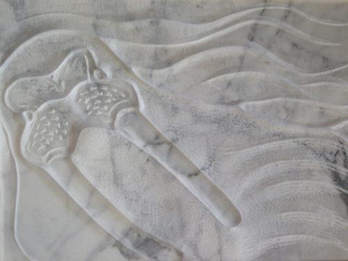 Walrus, tekening in steen, marmer, 20x30cm