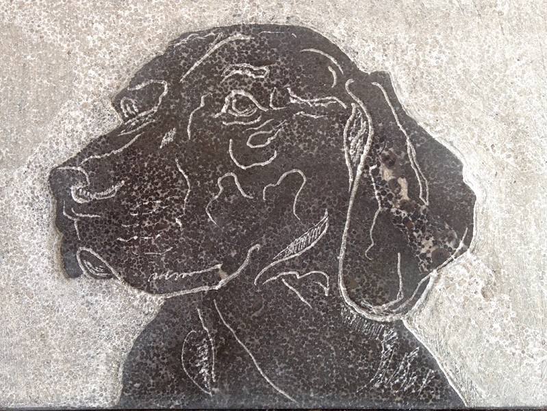 Dog Jack, portret, Weimaraner, Drawing in stone