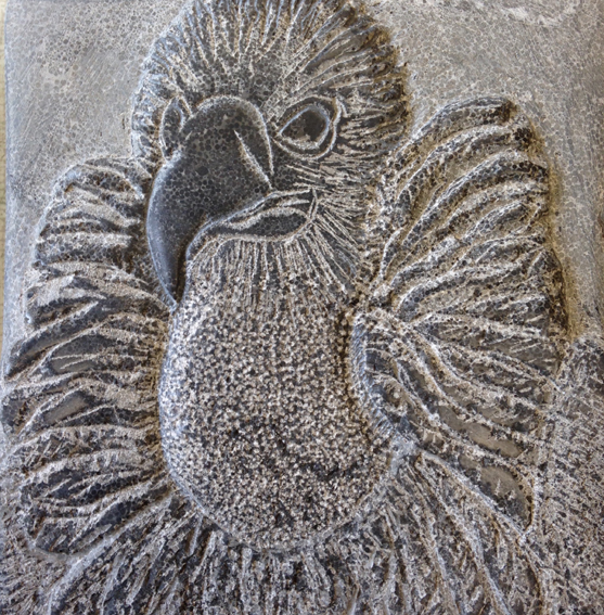 Vale gier, tekening in steen