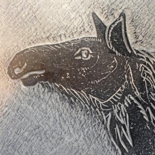 Eland, Tekening in steen, beschikbaar